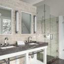 3×8-silver-bath